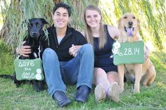 Engagement pic with dogs! :) Cheryl Amundsen Photography! #engagement #engagementpic #engagementpicture #picture #wedding #love #dogs #engagementdogs #savethedate