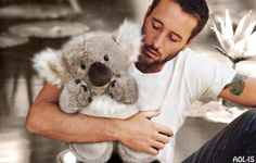 hug koala al dl