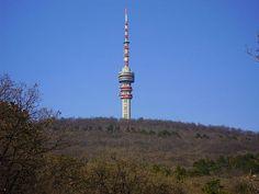 Pécsi tévétorony Building, Buildings, Construction