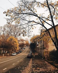 Find images and videos about coffee, autumn and fall on We Heart It - the app to get lost in what you love. Fall Inspiration, Autumn Cozy, Autumn Photography, Hello Autumn, Autumn Leaves, Beautiful Places, Scenery, Photos, Pictures