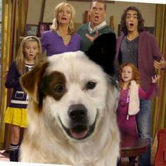 Family photo bomb!   #DogWIthABlog #MickAKAStan