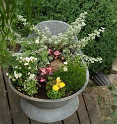 zinc-jardiniere-zoom.jpg 563 × 600 pixels