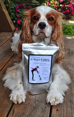 Contest over, thank you! New review of Dr. Harvey's le dogue bites! Check out the review & then enter our sleeping dog contest for a chance to win your very own bag, sponsored by Dr. Harvey's! Enter our sleeping dog contest here (ends 8/22/14 9pm EST) ----> https://secure.pagemodo.com/m/59S1NV <------ Review ----> http://adventuresofdex.blogspot.com/2014/08/le-dogue-bites-fish-treat-review.html <------