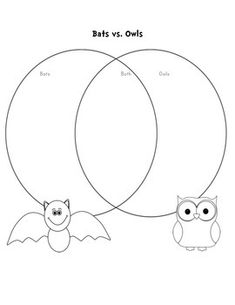Stellaluna Venn Diagram Bats and Birds Compare Contrast