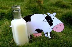 Soluţie 100% eco împotriva manei | Paradis Verde Paradis, Gardening Tips, Glass Of Milk, Snoopy, Christmas Ornaments, Holiday Decor, Health, Hair, Rose Trees