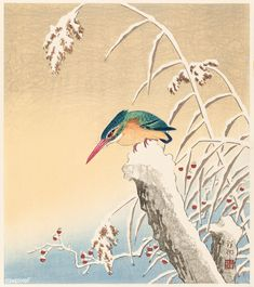 IJsvogel in de sneeuw, Ohara Koson, 1925 - 1936 Japanese Artwork, Japanese Painting, Japanese Prints, Chinese Prints, Chinese Art, Ohara Koson, Art Asiatique, Japan Art, Illustration Artists
