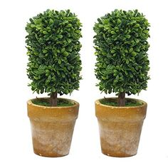 Makes for a wonderful and affectionate gift set for cherished family and friends or as a charming decorative display in your own home. Packaged for sale,2pcs. Great for use in home, commercial spaces, hotels, casinos, shopping malls,coffee house. High end quality and workmanship!. Approximate Dimensions (each pot, in inches): 5.9 H X 2.3Diameter.