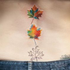 Maple leaves :-) Thanks Beth~ -