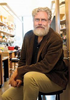 Synthetic Biology's New Menagerie