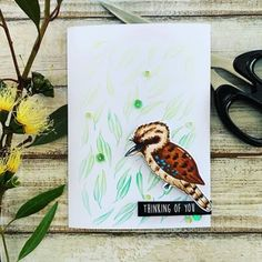 "Shop the productsCard Size 4 ¼"" x 5 ¾""Uniquely Creative Products UsedKookaburra Party Stamp Set, Gum Leaves stencil, Kookaburra Party cut-a-part sheetOther Products UsedTwisted Citron and Lucky Clover Distress Ink, blending tool, w. Trifold Shutter Cards, Leaf Stencil, Stencils, Rachel And Finn, Copic Sketch Markers, Creative Company, White Gel Pen, Diy Scrapbook"