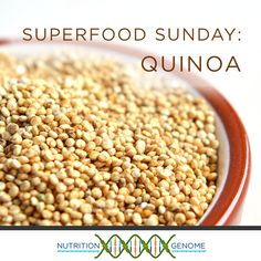 Quinoa is a fantastic source of protein, iron, B vitamins, and much more.