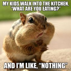 Motivation Cheat Meal Meme - Weightloss Meme - - Me! Motivation Cheat Meal Meme The post Me! Motivation Cheat Meal Meme appeared first on Gag Dad. Super Healthy Recipes, Healthy Chicken Recipes, Healthy Dinner Recipes, Diet Recipes, Diet Meme, Diet Humor, Diet Motivation Funny, Vegetable Nutrition, Diet Challenge