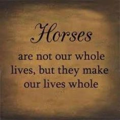 Ain't this the truth?  We love what or freinds at http://safehavenhorserescue.org are doing Re-Hab horses and introducing children to them
