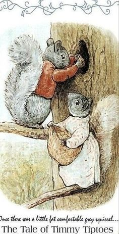Woodland Illustration, Book Illustration, Beatrix Potter Illustrations, Beatrix Potter Books, Beatrice Potter, Peter Rabbit And Friends, Woodland Creatures, Animal Drawings, Squirrel