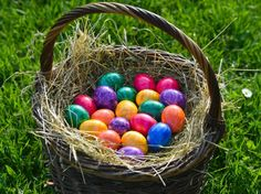 Easter search trends: People seek egg advice, recipes as holiday approaches - Happy Easter, Easter Bunny, Search Trends, Coloring Easter Eggs, Egg Hunt, Diy And Crafts, Christmas, Pasti, Advice