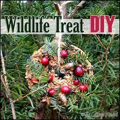 Wildlife Holiday Wreath DIY