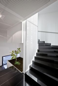Reflective black staircase