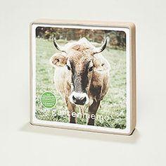 besondere Geschenkidee für alle Kuhfreunde - Gartenmemo Kuh