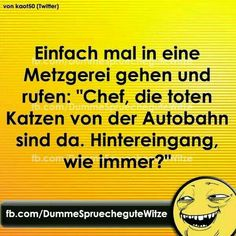 Funny Facts, Funny Jokes, Hilarious, Word Pictures, Funny Pictures, I Feel Bored, German Quotes, Funny Phrases, Bad Mood