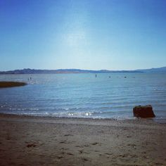 Point pinole. I have got to go here with Cupcake