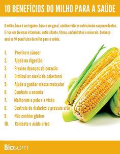 os 10 benefícios do milho para a saúde. (Gosto não, mas vou passar a comer... DC)