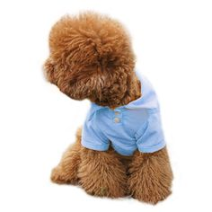PanDaDa Cute Doggy POLO Pet Puppy Cool Clothes T-Shirts Apparel *** Remarkable product available now. : Dog Shirts