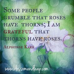| I am grateful that thorns have roses.