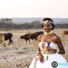 Traditional Ndebele bride Zulu, African Fashion Dresses, Traditional Wedding, Lion, Dream Wedding, Bride, Outfits, Leo, Wedding Bride