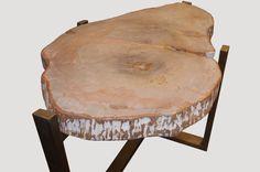 Petrified Wood Side Table by Adrianna Shamaris