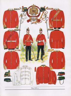 VINTAGE MILITARY BRITISH UNIFORM ARMY PRINT ~ 1868-71 INFANTRY LINE OFFICERS in Collectables, Militaria, Other Militaria, Army | eBay