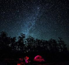 Big Cypress National Preserve Recognized As International Dark Sky Place || Image source: http://www.nationalparkstraveler.com/sites/default/files/styles/panopoly_image_original/public/media/bicy-night_skiescourtesy_of_diana_umpierre_700.jpg?itok=hR1Je9H6