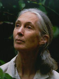 Happy Birthday, Jane Goodall, April 3. The Fabulous Birthday Blog