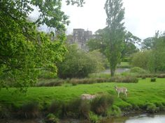 images medeival castles princess by the water - Google Search