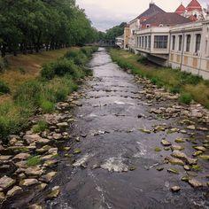Niedrigwasser an der Ahr.