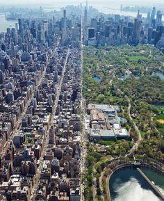 New York City, Central Park Manhattan New York, Park In New York, New York City, Nyc, Places To Travel, Places To Visit, Voyage New York, City Aesthetic, City Photography