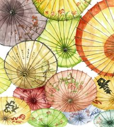 Paper Umbrellas I have always liked paper umbrellas and lanterns.  Suce nice translucent color.