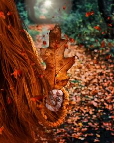 Guardian Angel Pictures, Good Morning Sunday Images, Freaky Deaky, Phone Wallpaper Images, Hello September, Autumn Aesthetic, Beautiful Gif, Autumn Photography, Pretty Wallpapers