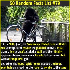 1. In 2004, Juan, an Andean spectacled bear in Berlin zoo attempted to escape. He paddled across a moat using a log as a raft, scaled a wall and then finally appeared to commandeer a bicycle before being shot with a tranquilizer gun. 2.April 11, 1954, is considered the most boring day in history with no significant births or deaths occurring on that day.