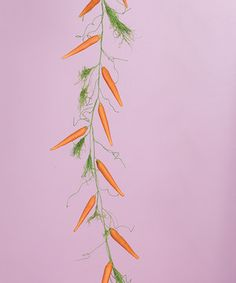 Transpac Imports 5' Carrot Garland by Transpac Imports #zulily #zulilyfinds