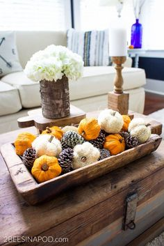 Easy Fall Centerpiece in Minutes - 2 Bees in a Pod Fall Decoration Inspiration Fall Inspiration, Decoration Inspiration, Decor Ideas, Fall Decorations Diy, Dyi Fall Decor, Front Porch Fall Decor, Fall House Decor, Outside Fall Decorations, Turkey Decorations