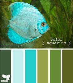 color palette inspirations-aquarium