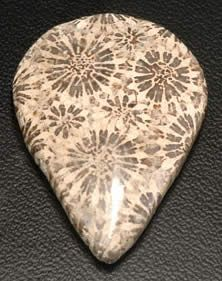 Fossil coral is a natural stone that is formed when ancient coral is gradually replaced with agate. The proper name for this material is agatized coral or agatized fossil coral. The fossilized coral typically appears as small flower-like patterns in the stone.