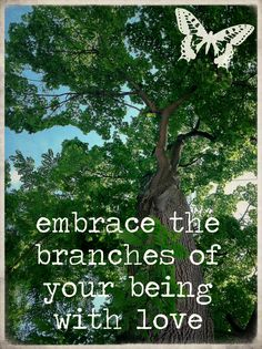 ♥ embrace the branches  of your being  with love ♥