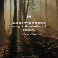 "Francis of Assisi ""Just one ray of sunshine is enough to dispel millions of shadows."" Photo by Valeriy Andrushko / Unsplash"
