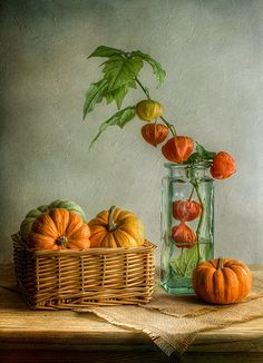 Autumn, calabazas