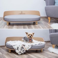 I Need An Attractive But Simple Logo For My Pet Products - I Need An Attractive But Simple Logo For My Pet Products Business Hymietobias Needed A New Logo Design And Created A Contest On Designs A Winner Was Selected From Designs Submitted By Free Luxury Dog Kennels, Diy Dog Crate, Pet Hotel, Dog Beds For Small Dogs, Diy Dog Bed, Dog Furniture, Dog Rooms, Pet Beds, Animal Design