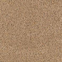 1000 Images About Carpet On Pinterest Carpet Colors