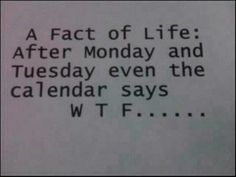 #Wednesday is here WTF?