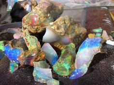 Places to dig for opals in Nevada A Collection of Opals from Bonanza Opal Mine in Denio, Nevada. Photo: Bonanza Opal Mines Nevada is famous for its beautiful, colorful. Minerals And Gemstones, Rocks And Minerals, Crystals Minerals, Raw Gemstones, Gem Hunt, Rock Tumbling, Fossil Hunting, Rock Hunting, Rock Collection