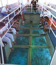 Talk glass bottom boat catalina island something